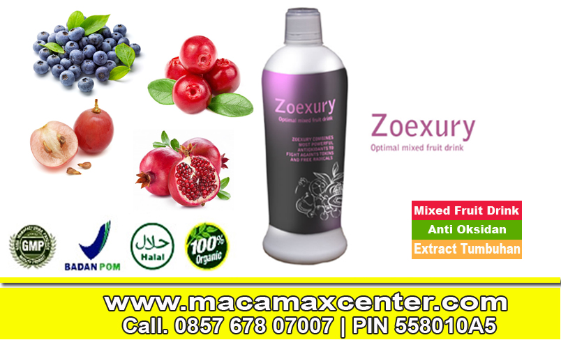 Harga Zoexury Minuman Herbal